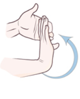 Wrist-Flexor-Stretch