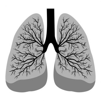Black lung in mining: Why it resurfaced and how to prevent it