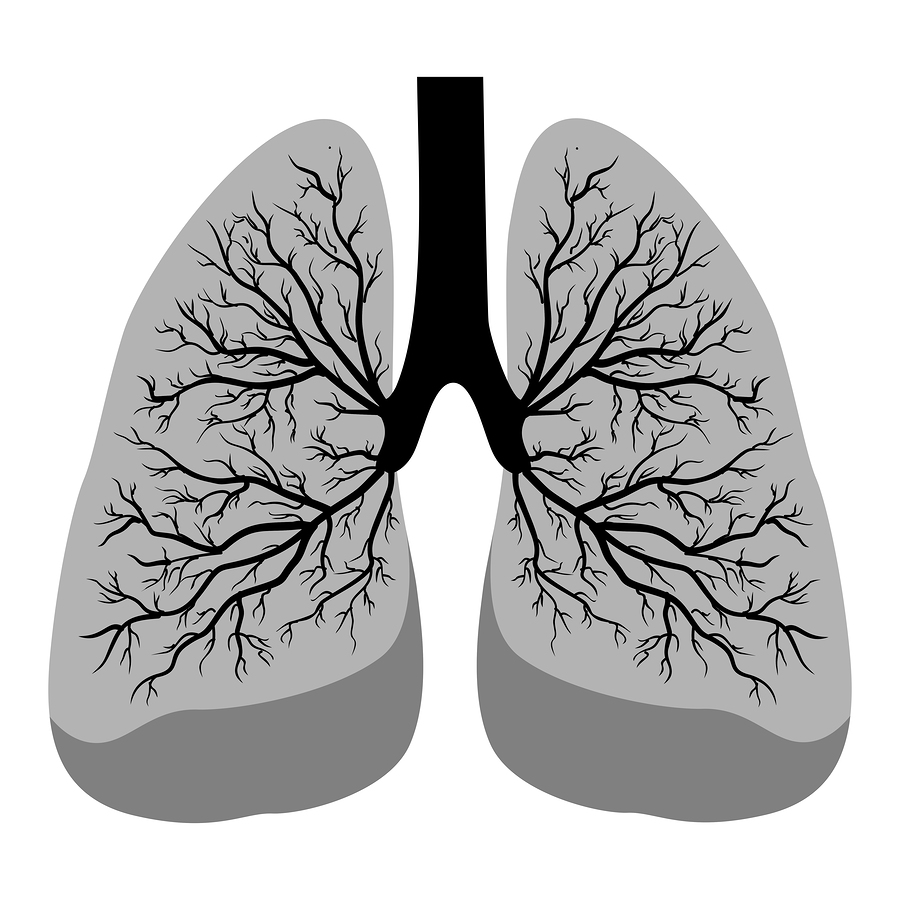 how to prevent black lung in mining