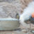 Alarm over silica exposure among tunnel and construction workers