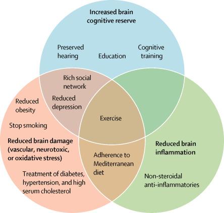 Reducing Dementia Risk