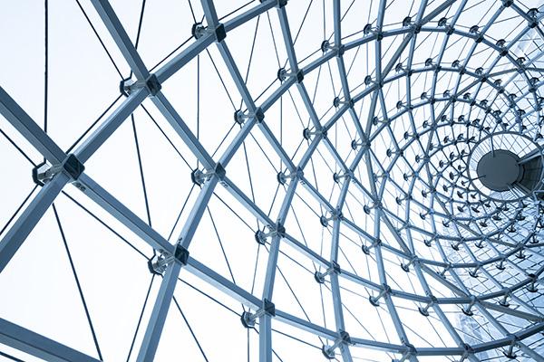 SIA Capability Framework